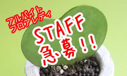 堺東のスナックでアルバイトしてみませんか。